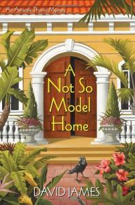 A Not So Model Home - David James