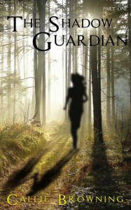 The Shadow Guardian - Callie Browning
