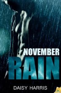 November Rain - Daisy Harris