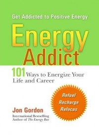 Energy Addict: 101 Physical, Mental, and Spiritual Ways to Energize Your Life - Jon Gordon
