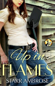Up in Flames - Starr Ambrose