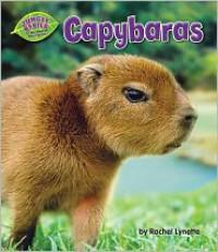 Capybaras - Rachel Lynette