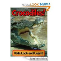 Crocodiles! Learn About Crocodiles and Enjoy Colorful Pictures - Look and Learn! (50+ Photos of Crocodiles) - Becky Wolff