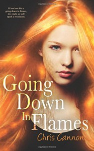 Going Down in Flames (A Going Down in Flames Novel) - Chris Cannon
