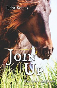Join Up (Island Series) (Volume 3) - Tudor Robins