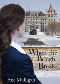 When the Bough Breaks - Ane Mulligan