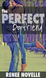 The Perfect Boyfriend - R.S. Novelle