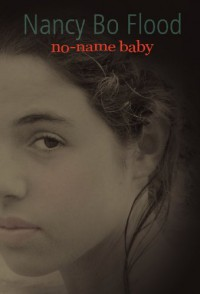 No Name Baby - Nancy Bo Flood