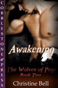 Awakening - Christine  Bell