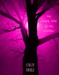 The Other Side of the Window - Chloe Bierge
