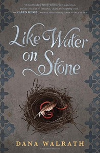 Like Water on Stone - Dana Walrath
