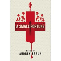 A Small Fortune - Audrey Braun