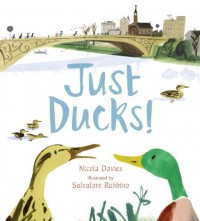 Just Ducks! - Nicola Davies, Salvatore Rubbino