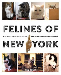 Felines of New York: A Glimpse Into the Lives of New York's Feline Inhabitants - Jim Tews