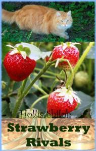 Strawberry Rivals - Hollis Shiloh
