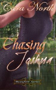 Chasing Joshua - Cara North