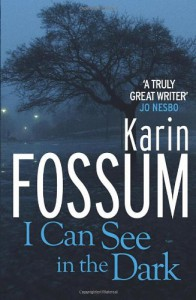I Can See in the Dark - Karin Fossum
