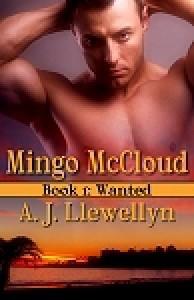 Wanted (Mingo McCloud, #1) - A.J. Llewellyn