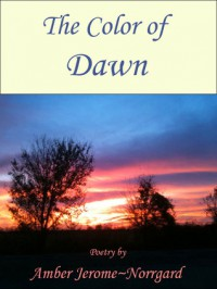 The Color of Dawn - Amber Jerome~Norrgard