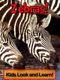 Zebras! Learn About Zebras and Enjoy Colorful Pictures - Look and Learn! (50+ Photos of Zebras) - Becky Wolff