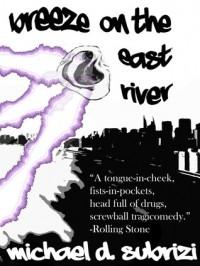 Breeze On The East River - Michael D. Subrizi