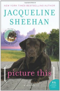 Picture This: A Novel (P.S.) - Jacqueline Sheehan