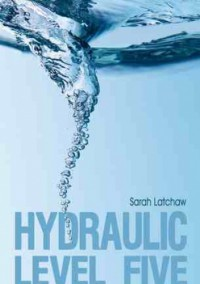 Hydraulic Level Five - Sarah Latchaw