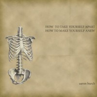 How to Take Yourself Apart, How to Make Yourself Anew - Aaron Burch