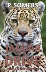 Jaguar in the Drive - P. Somers