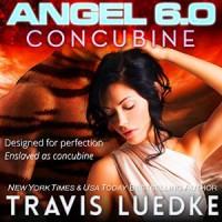 Angel 6.0: Concubine - Travis Luedke, Rachel Orlin
