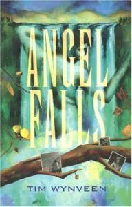 Angel Falls - Tim Wynveen