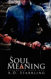 Soul Meaning - A D Starrling
