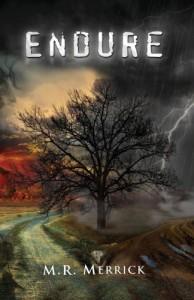 Endure - M.R. Merrick