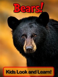 Bears! Learn About Bears and Enjoy Colorful Pictures - Learning Fun! (50+ Photos of Bears) - Norma Jones