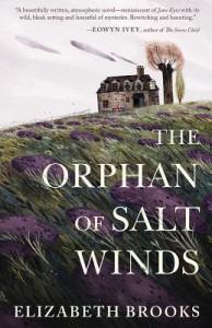 The Orphan of Salt Winds - Elizabeth L. Brooks