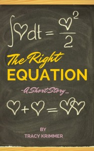 The Right Equation - Tracy Krimmer