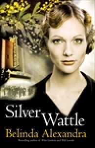 Silver Wattle - Belinda Alexandra
