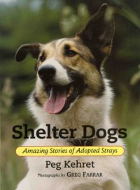 Shelter Dogs: Amazing Stories of Adopted Strays - Peg Kehret, Greg Farrar