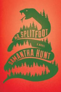 Mr. Splitfoot - Samantha Hunt