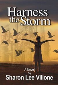 Harness The Storm - Sharon Lee Villone