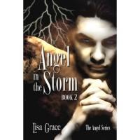Angel in the Storm (The Angel #2) - Lisa Grace,  Dusty Catlett