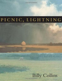 Picnic, Lightning - Billy Collins