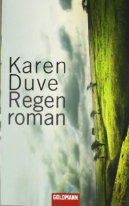 Regenroman (German Edition) - Karen Duve