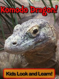 Komodo Dragons! Learn About Komodo Dragons and Enjoy Colorful Pictures - Look and Learn! (50+ Photos of Komodo Dragons) - Becky Wolff