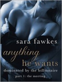 Anything He Wants 1: The Meeting  - Sara Fawkes