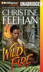 Wild Fire  - Phil Gigante, Christine Feehan