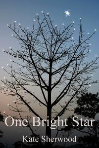 One Bright Star (Dark Horse, #3.1) - Kate Sherwood