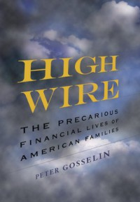 High Wire: The Precarious Financial Lives of American Families - Peter Gosselin