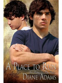 A Place To Run - Diane  Adams