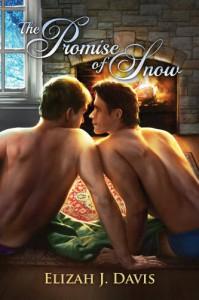 The Promise of Snow - Elizah J. Davis